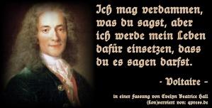 Voltaire-Ich-mag-verdammen-was-du-sagst-aber-ich-werde-mein-Leben-dafuer-einsetzen-dass-du-es-sagen-darfst